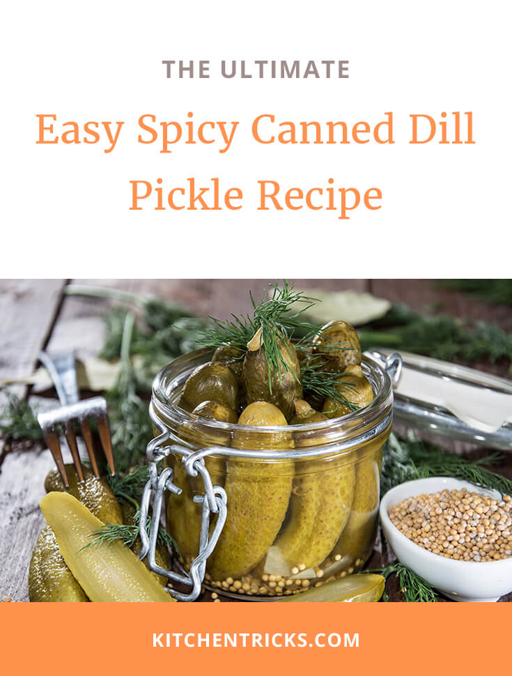 spicy canned dill pickle recipe 2 XS